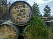 """<p><a href=""""https://foursquare.com/prairieberry"""" rel=""""nofollow noopener"""" target=""""_blank"""" data-ylk=""""slk:Praire Berry Winery"""" class=""""link rapid-noclick-resp"""">Praire Berry Winery</a> in Hill City</p><p>""""This was a must-stop when my wife and I traveled from Chicago. We've been there before and know they will ship to Illinois, but we had to stop. Bought three bottles. Highly recommended!<span class=""""redactor-invisible-space"""">"""" - Foursquare user <a href=""""https://foursquare.com/user/20926619"""" rel=""""nofollow noopener"""" target=""""_blank"""" data-ylk=""""slk:Aaron Laudermith"""" class=""""link rapid-noclick-resp"""">Aaron Laudermith</a></span></p>"""