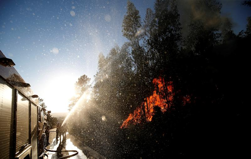 Firefighters work to put outthe flames next to the village of Macao, near Castelo Branco, Portugal, on Aug. 17, 2017. (Rafael Marchante / Reuters)