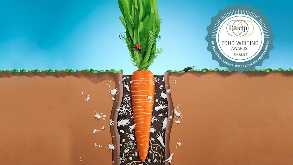 An illustration of a carrot in in the ground showing the roots and bugs living around it