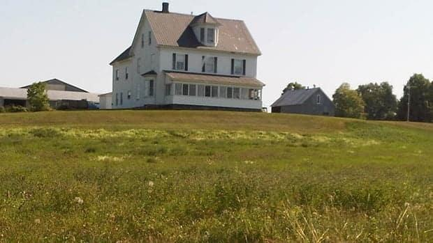 The farmhouse and barns will be preserved along with a 20-acre fruit farm. The rest of the land will be developed into high-density housing.  (CBC News - image credit)