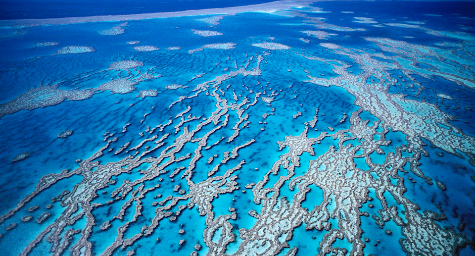 An aerial view of Great Barrier Reef.