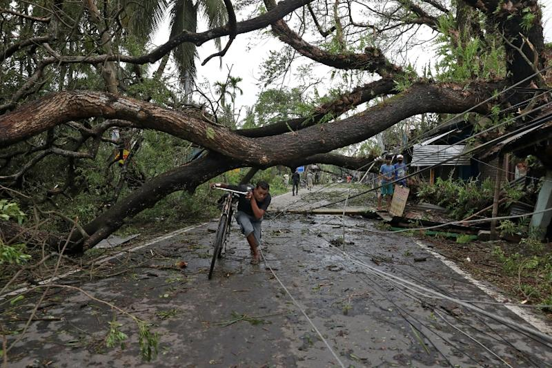 A Personal Loss: How Death of Over 5,000 Trees Due to Amphan Cyclone Will Impact Kolkata