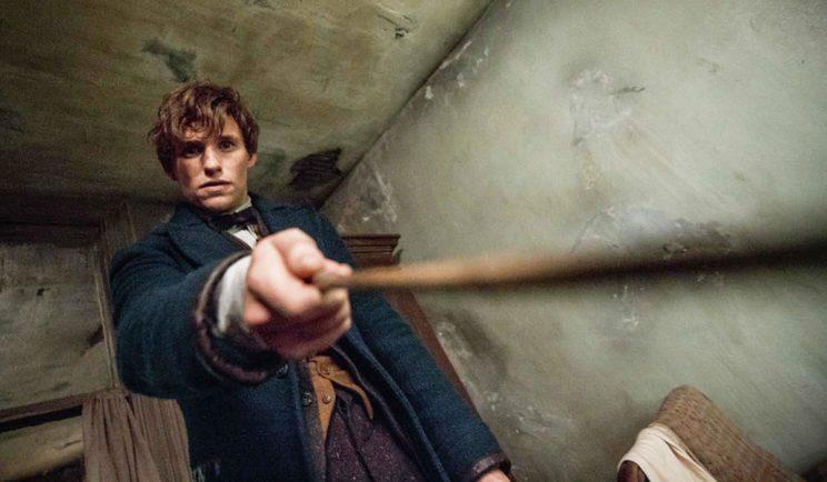 Why does Newt even have a wand? - Credit Warner Bros.