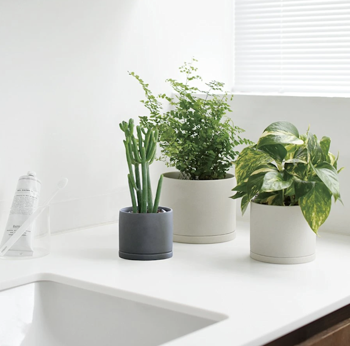 """These planters are glazed using a Japanese technique called <em>yo-hen</em> to create porcelain perfection. $25, Sustainable Home Goods. <a href=""""https://yoursustainablehome.com/products/plant-pot-191_-105mm-4in?_pos=1&_sid=07c5cc93d&_ss=r"""" rel=""""nofollow noopener"""" target=""""_blank"""" data-ylk=""""slk:Get it now!"""" class=""""link rapid-noclick-resp"""">Get it now!</a>"""
