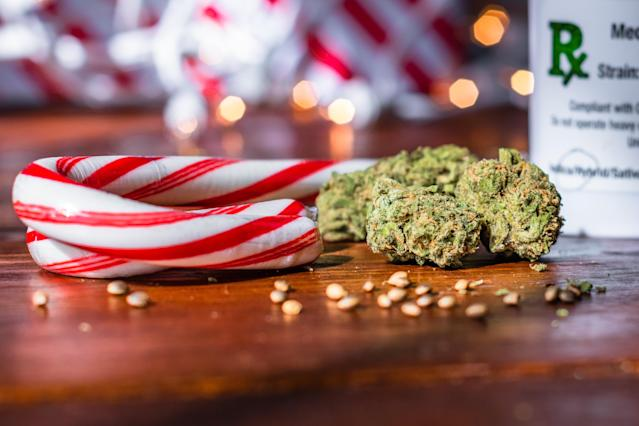 Medical marijuana buds up close with peppermint candy and bokeh lights on wood table (GETTY)