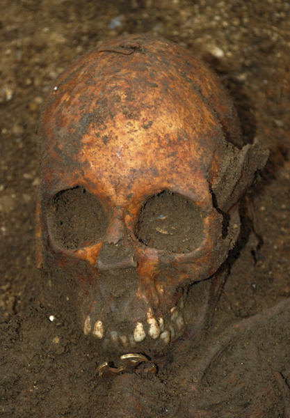 In this undated image made available by the University of Cambridge in England early Friday, March 16, 2012, showing a buried skull. Archaeologists excavating near Cambridge have stumbled upon a rare and mysterious find, the skeleton of a 7th-Century teenager buried in an ornamental bed along with a gold-and-garnet cross, an iron knife and a purse of glass beads. There is very little known about this funerary practice, which one archaeologist, Alison Dickens, said would open a window of knowledge into the transitional period when the pagan Anglo-Saxons were gradually adopting Christianity. (AP Photo/University of Cambridge)