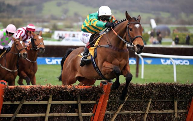 <span>Defi Du Seuil takes the last flight in the lead</span> <span>Credit: David Davies/PA Wire </span>
