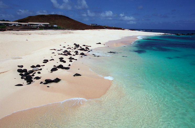 British woman bitten by shark off Ascension Island named