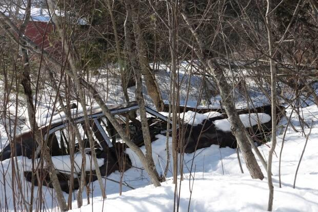 An old Pontiac that crashed in the woods on the island is one of the many signs that still remain of earlier eras in its history.