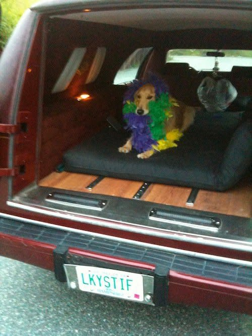 How Driving A Hearse Keeps You From Getting Stiff