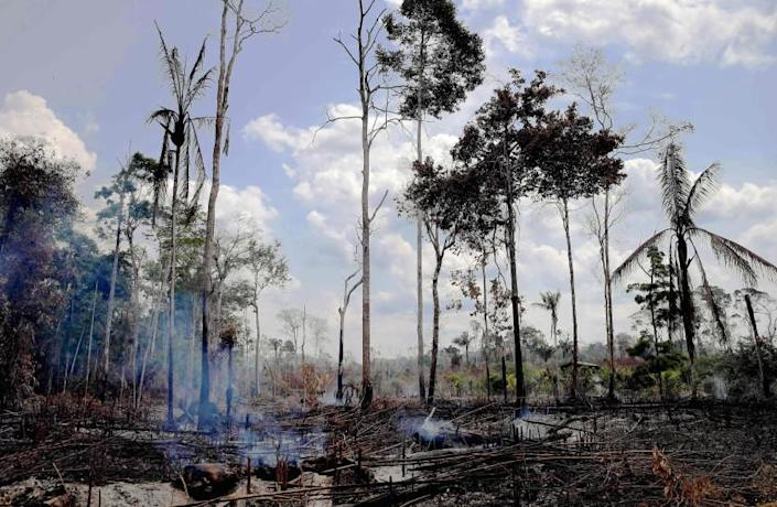 TOPSHOT - View of a burnt area in the Amazon rainforest, near Porto Velho, Rondonia state, Brazil, on August 25, 2019. - Brazil on Sunday deployed two C-130 Hercules aircraft to douse fires devouring parts of the Amazon rainforest, as hundreds of new blazes were ignited and a growing global outcry over the blazes sparks protests and threatens a huge trade deal. (Photo by CARL DE SOUZA / AFP)CARL DE SOUZA/AFP/Getty Images ** OUTS - ELSENT, FPG, CM - OUTS * NM, PH, VA if sourced by CT, LA or MoD **