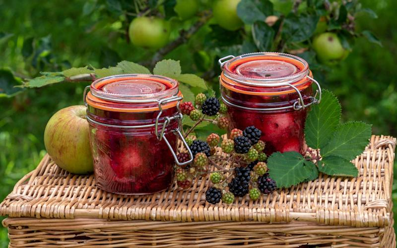 Xanthe Clay's bottled apple and blackberry recipe is bursting with flavours. - Andrew Crowley