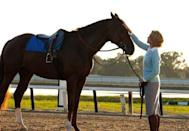 <p><strong><em>Secretariat</em></strong></p><p>Home to Churchill Downs, the spot where the Kentucky Derby takes place annually, it makes sense that a movie set in the state would focus on one of the most famous race horses of all time. </p>