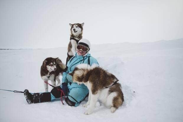 Miranda Currie's short film, Tails on Ice, is a coming-of-age story about a Canadian Inuit sled dog. It played at the Cannes Short Film Festival in France last week. (Pat Kane - image credit)