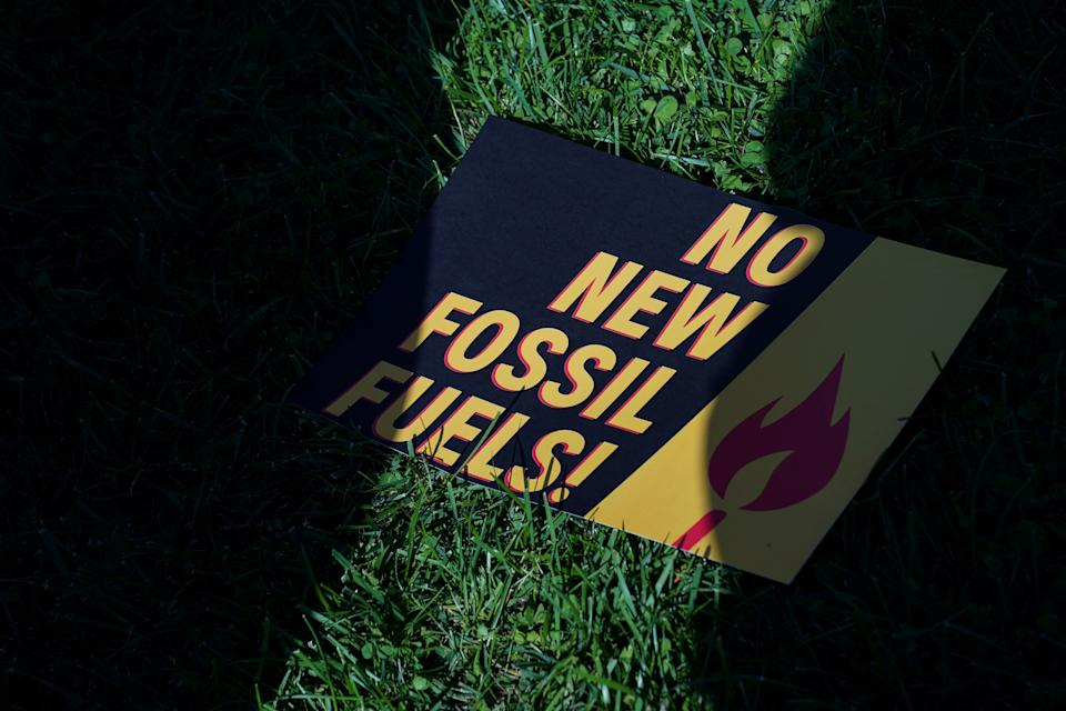 A protest sign in the grass reads