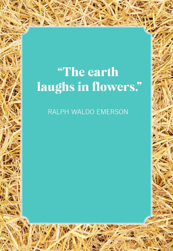 """<p>""""The earth laughs in flowers.""""</p>"""