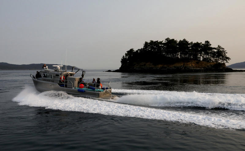 The Lummi police boat heads to the west side of San Juan Island in an attempt to feet chinook salmon to an ailing young orca, J50, seen from the King County Research Vessel SoundGardian, Friday, Aug. 10, 2018. Teams of whale experts raced out to sea Thursday to help an ailing young killer whale, but they don't plan to intervene to help a mother orca in the same critically endangered pod that has been pushing the body of her dead calf for more than two weeks. (Alan Berner/The Seattle Times via AP, Pool)