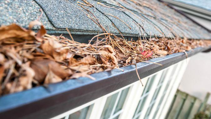 """""""Block, Architectural Feature, Building Exterior, Built Structure, Chores, Clogged"""", Close-up, Color Image, Colors, Covering, Cross-processed, Defocused, Eavestrough, Full, Horizontal, House, Leaf, Nobody, Outdoors, Overflowing, Photography, Roof, Soft Focus, Toned Image, cleaning"""