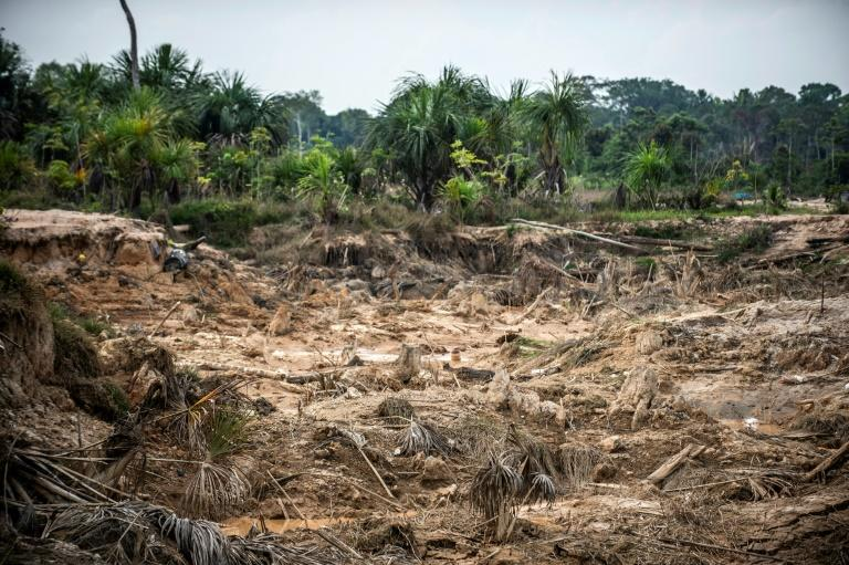 View earlier this month of a damaged area of the Amazon rainforest after illegal mining took place in southeastern Peru where the Amahuaca indigenous people say they are besieged by gold miners and loggers (AFP Photo/ERNESTO BENAVIDES)