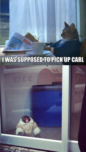 Ikea Monkey waits for a friend who never comes (via Reddit)