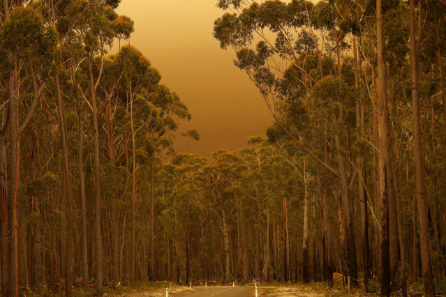 Thick smoke from bushfires fills the air in East Gippsland on Jan. 02, 2020, Australia. (Photo by Darrian Traynor/Getty Images)