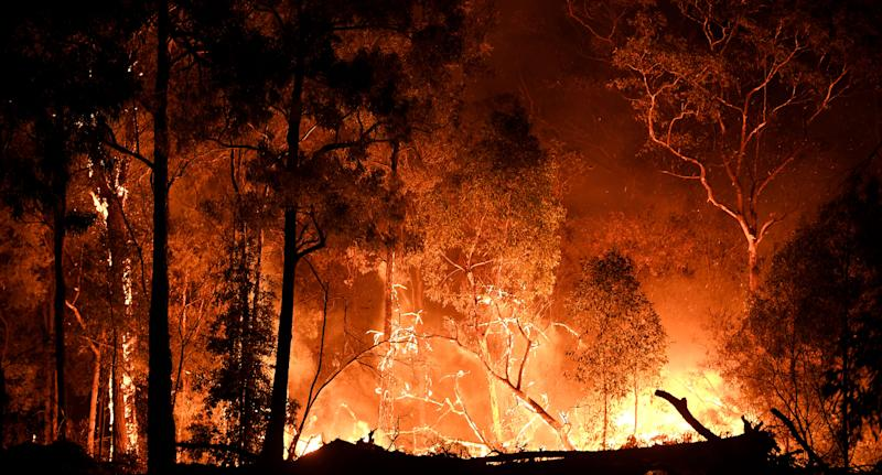 A man, 51, has been charged after allegedly lighting an Ebor fire to protect his cannabis crop. Pictured is a stock image of a NSW bushfire.