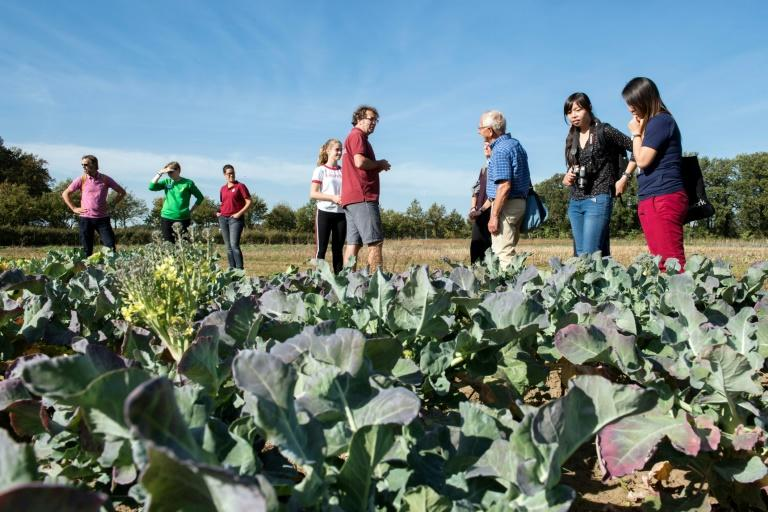 Some 200 families decide what the farm will produce -- and they will eventually eat