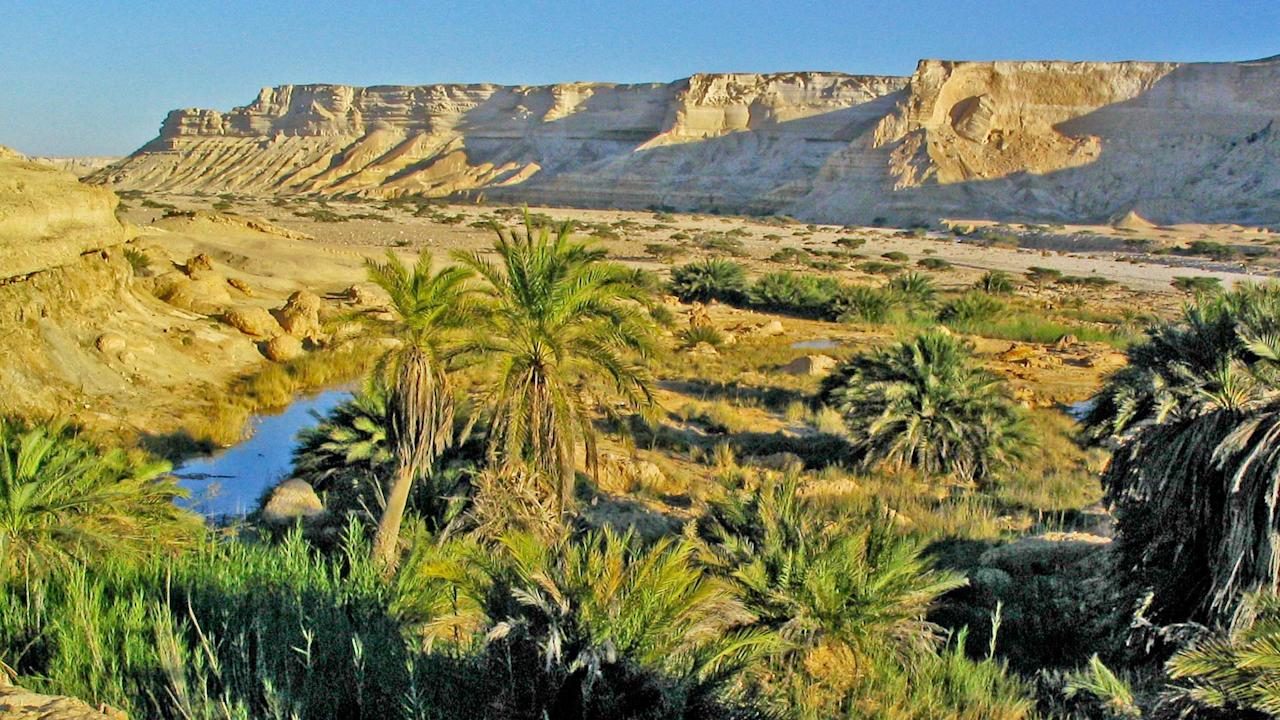 <p>Oman may not have a lot of firsts, but its rich cultural heritage goes back to the time it traded in frankincense. From beaches to forts, Oman has it all. And with one-way fares starting at a little over Rs 5,800, February may not be such a bad time to visit the country after all. Fly from Mumbai on Thursday, February 7 with fares starting from Rs 5,846 and return on Sunday, February 17 with fares starting from Rs 6,079.<br />Photograph: Wikimedia Commons </p>