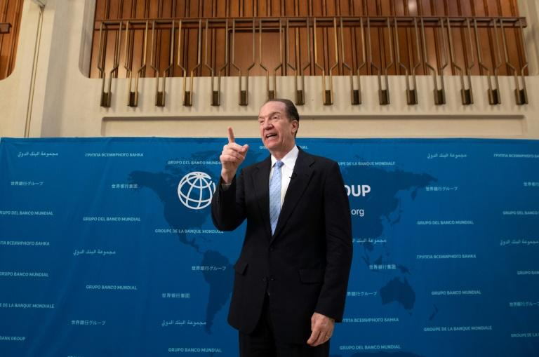 World Bank President David Malpass told AFP countries in Africa can have more of a direct impact on their economies than anything provided from outside (AFP Photo/SAUL LOEB)