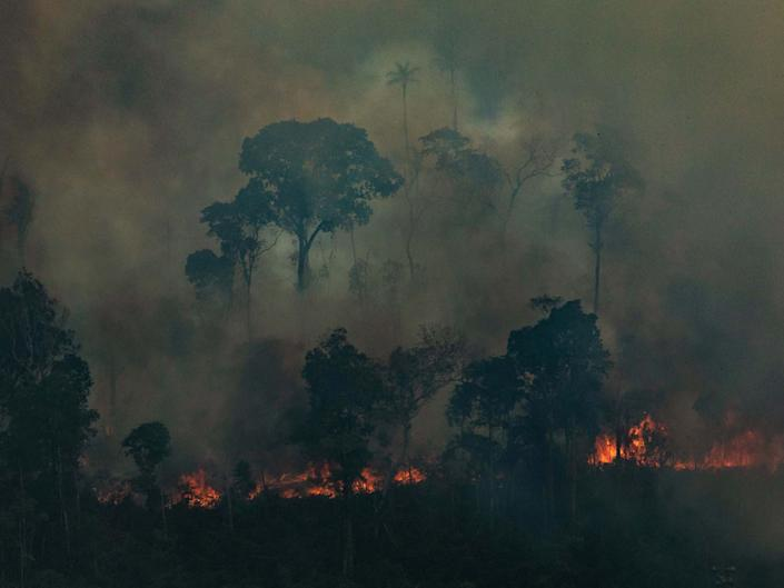 Aerial picture released by Greenpeace showing a patch of forest being cleared with fire in the municipality of Candeias do Jamari, in northwestern Brazil, on August 24, 2019: AFP/Getty