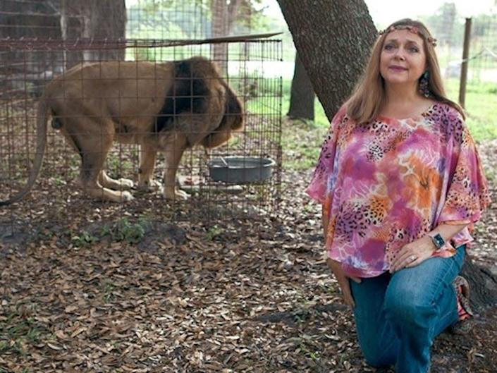 Carole Baskin is an animal activist who runs the Big Cat Rescue sanctuary in Tampa, Florida.