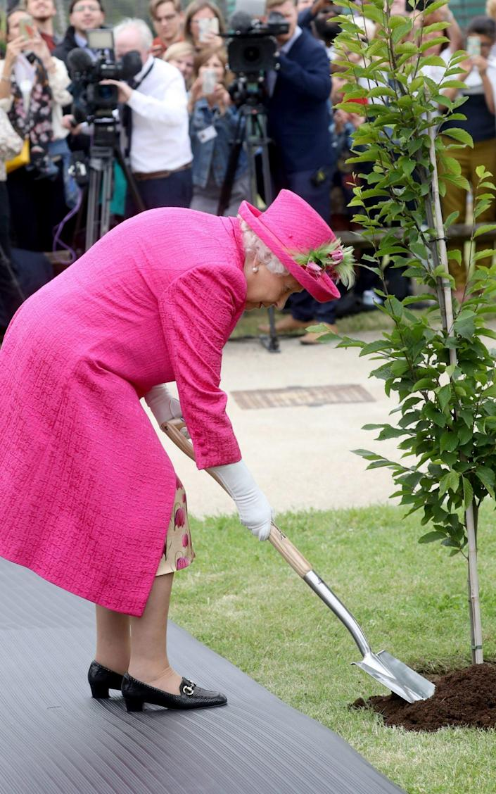 Queen Elizabeth plants a tree during a visit to the National Institute of Agricultural Botany on July 9, 2019 - Chris Jackson/Getty Images