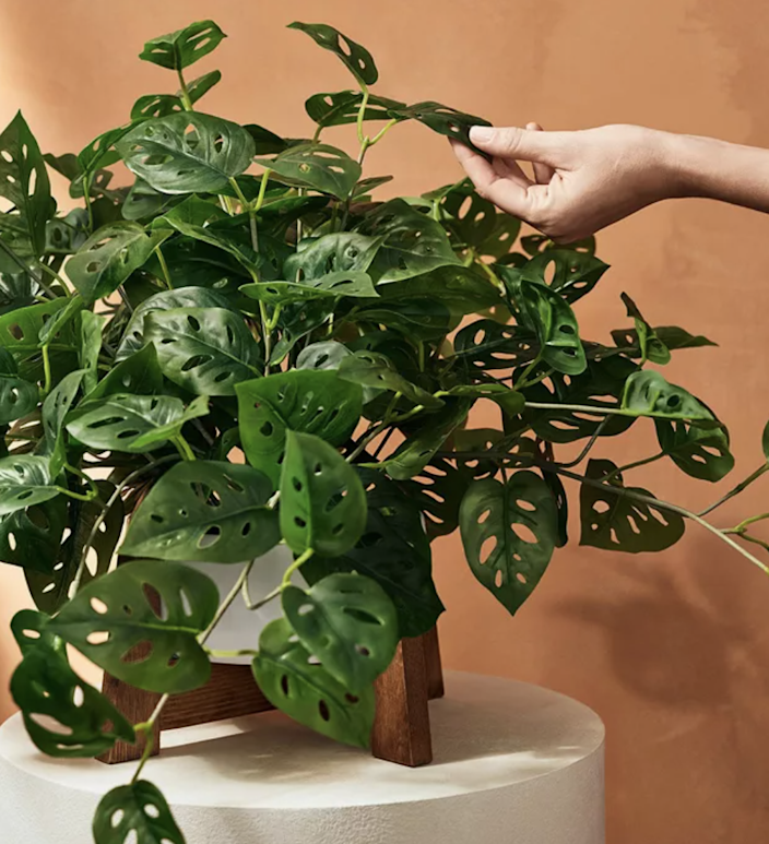 """$50, Target. <a href=""""https://www.target.com/p/23-34-x-24-34-faux-monstera-adansonii-plant-in-pot-with-wood-stand-white-hilton-carter-for-target/-/A-81599134#lnk=sametab"""" rel=""""nofollow noopener"""" target=""""_blank"""" data-ylk=""""slk:Get it now!"""" class=""""link rapid-noclick-resp"""">Get it now!</a>"""