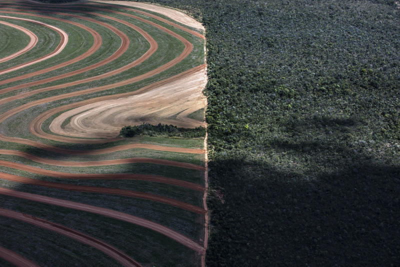 A deforested area in Matopiba in Brazil (Picture: PA)