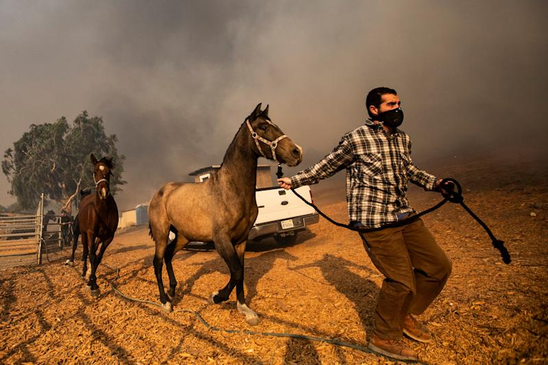 Ranchers evacuate horses in a burning ranch as the Easy Fire spreads near Simi Valley, North of Los Angeles, Calif., on Oct. 30, 2019. (Photo: Etienne Laurent/EPA-EFE/Shutterstock)