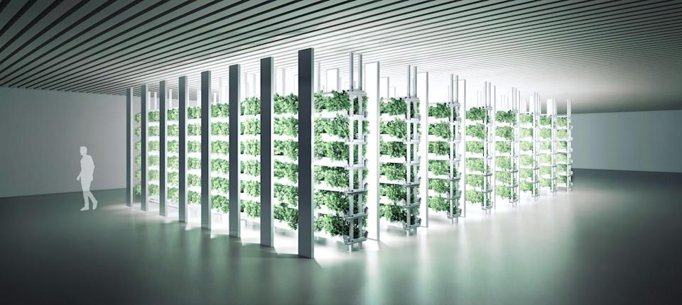 Frank Qin said the technology behind his grow boxes will underpin his company's Chinese cultivation facility. (Provided)