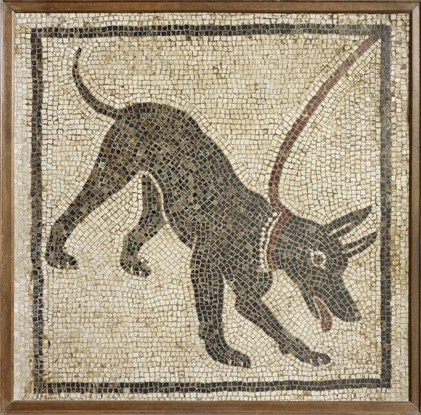 Undated handout photo issued by the British Musuem Thursday Sept. 20, 2012 of a mosaic of a guard dog from the House of Orpheus, Pompeii, 1st century AD, Italy as dozens of objects recovered from the ruins of Roman cities Pompeii and Herculaneum will go on show outside Italy for the first time at a new exhibition at the museum. The two cities on the Bay of Naples were wiped out by the eruption of Mount Vesuvius in 79 AD. The show will feature objects found in their ruins including jewellery, carbonised food and a baby's crib that still rocks on its curved runners. The exhibition will run March 28 to Sept. 29, 2013. (AP Photo/The Trustees of the British Museum)