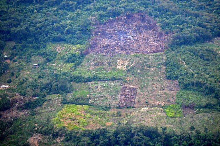 Authorities say the region of Catatumbo is too dangerous for them to attempt to clear it of landmines