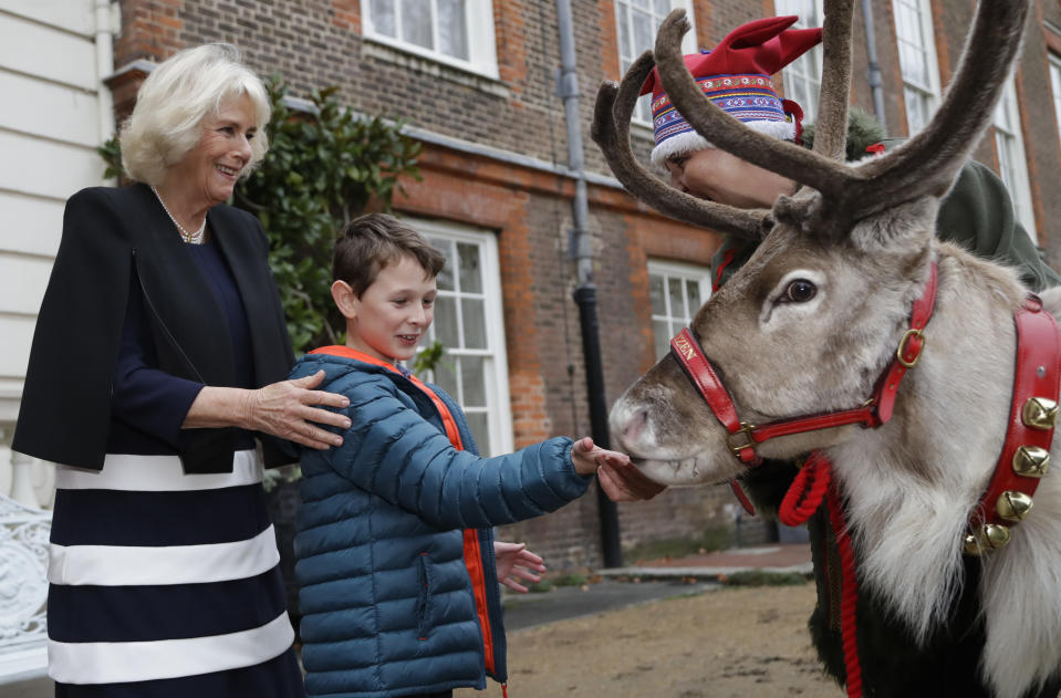 Britain's Camilla, Duchess of Cornwall stands with Vincent Evans 8, as he feeds Reindeer Blitzen with his handler Karen Perrins in the gardens at Clarence House in London, Thursday, Dec. 6, 2018. Each year, The Duchess of Cornwall invites children to decorate the Christmas tree at Clarence House. This December, the event was attended by children and families supported by Helen & Douglas House and Roald Dahl's Marvellous Children's Charity. (AP Photo/Kirsty Wigglesworth, pool)