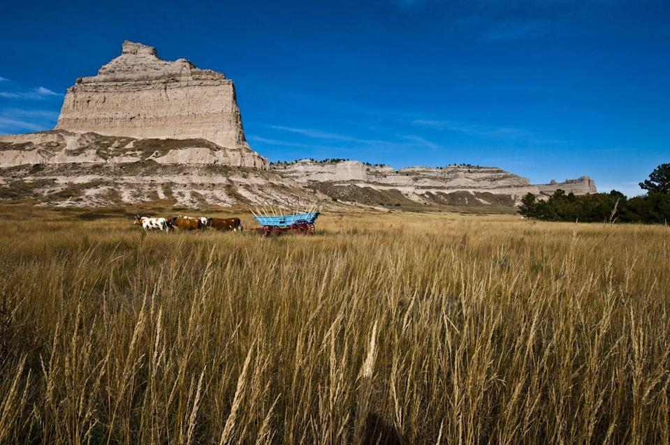 """<p>What's the best way to see Scotts Bluff National Monument? That would be the <a href=""""https://www.tripadvisor.com/Attraction_Review-g60962-d8678555-Reviews-Saddle_Rock_Trail-Gering_Nebraska.html"""" rel=""""nofollow noopener"""" target=""""_blank"""" data-ylk=""""slk:Saddle Rock Trail"""" class=""""link rapid-noclick-resp"""">Saddle Rock Trail</a>, a 1.6-mile uphill path where you'll witness the very landscape seen by pioneers on the Oregon Trail.</p><p><br><a class=""""link rapid-noclick-resp"""" href=""""https://go.redirectingat.com?id=74968X1596630&url=https%3A%2F%2Fwww.tripadvisor.com%2FAttraction_Review-g60962-d8678555-Reviews-Saddle_Rock_Trail-Gering_Nebraska.html&sref=https%3A%2F%2Fwww.countryliving.com%2Flife%2Ftravel%2Fg24487731%2Fbest-hikes-in-the-us%2F"""" rel=""""nofollow noopener"""" target=""""_blank"""" data-ylk=""""slk:PLAN YOUR HIKE"""">PLAN YOUR HIKE</a></p>"""