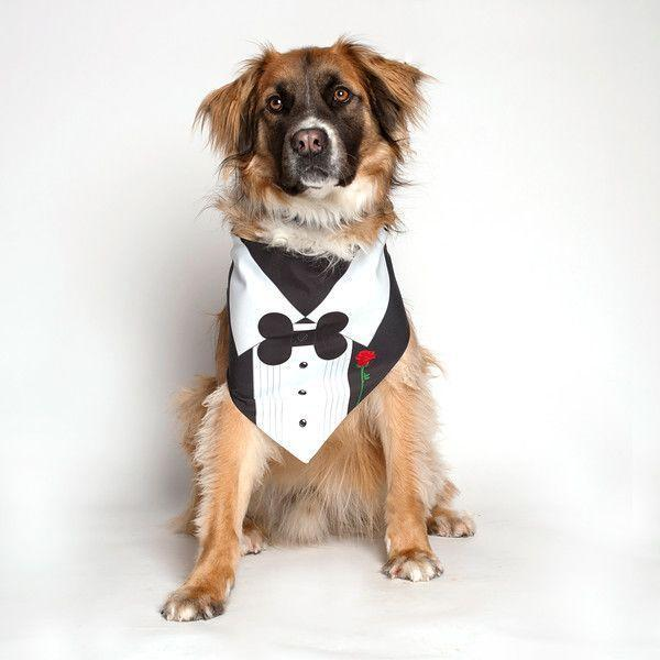 """<p>For pups who feel most dignified in formalwear.</p><br><br><strong>Dog Fashion Living</strong> Tuxedo With Rose Bandana, $12, available at <a href=""""https://dogfashion.us/black-tuxedo-with-a-rose-dog-bandana-for-special-occasion-or-wedding/"""" rel=""""nofollow noopener"""" target=""""_blank"""" data-ylk=""""slk:Dog Fashion"""" class=""""link rapid-noclick-resp"""">Dog Fashion</a>"""
