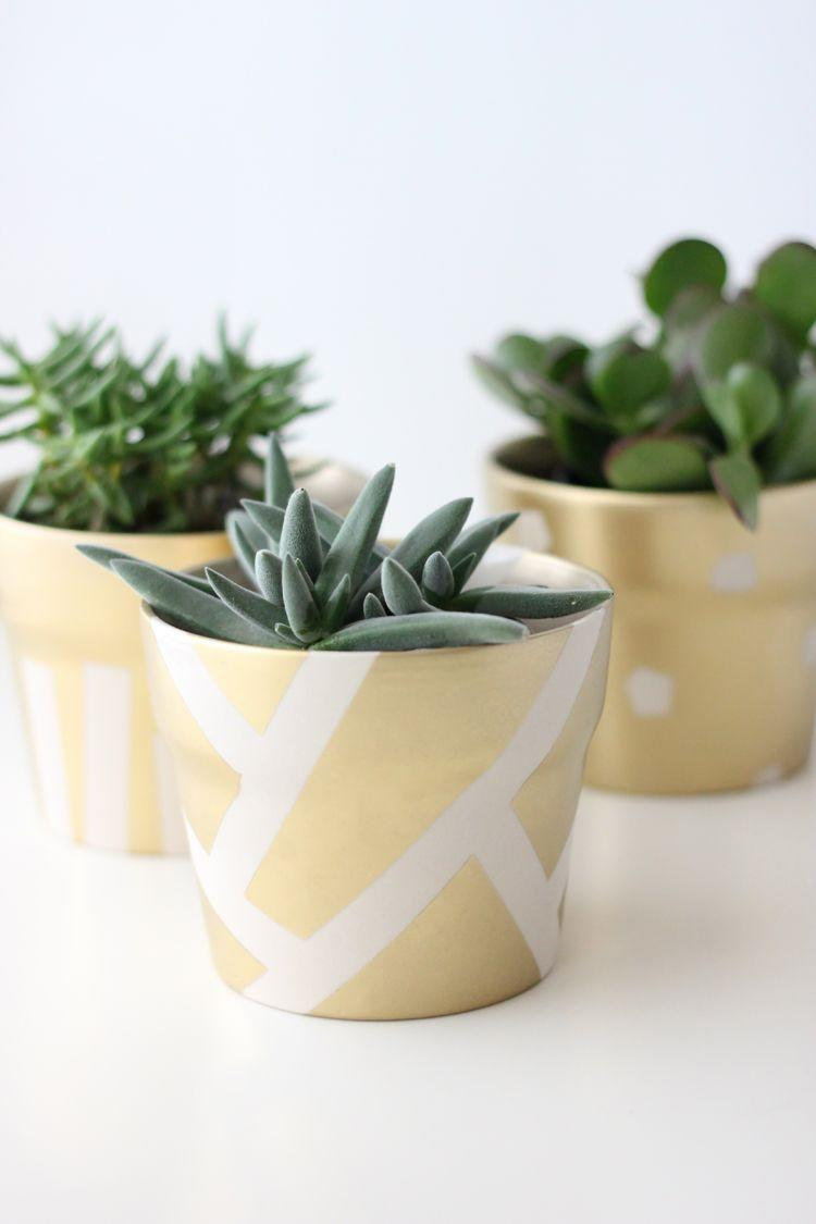 "<p>Why worry about finding pots of gold this St. Patrick's Day when you can make your own with this simple, elegant project?</p><p><strong>Get the tutorial at <a href=""https://www.deliacreates.com/gilded-succulent-pots-st-patricks-day/"" rel=""nofollow noopener"" target=""_blank"" data-ylk=""slk:Delia Creates"" class=""link rapid-noclick-resp"">Delia Creates</a>. </strong></p><p><strong><a class=""link rapid-noclick-resp"" href=""https://www.amazon.com/Krylon-K01000A07-Premium-Metallic-Spray/dp/B000BZX3H6/?tag=syn-yahoo-20&ascsubtag=%5Bartid%7C2164.g.35012898%5Bsrc%7Cyahoo-us"" rel=""nofollow noopener"" target=""_blank"" data-ylk=""slk:SHOP GOLD SPRAY PAINT"">SHOP GOLD SPRAY PAINT</a><br></strong></p>"