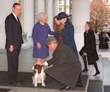 <p>President George Bush at the steps of the White House watches as President-elect Bill Clinton pets the Bush family's dog Millie as First Lady Barbara Bush greets Hillary Clinton. The Clintons and Bushes rode to the Capitol together for Clinton' swearing-in as the 42nd president of the United States on January 20, 1993.</p>