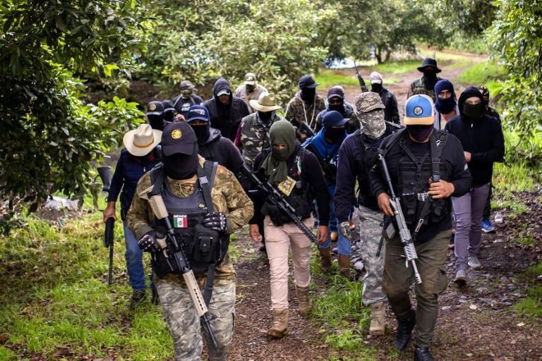 Members of the Mexican self-defense group Pueblos Unidos guard avocado plantations in the western state of Michoacan
