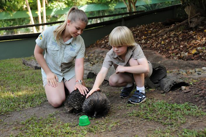 """This undated image provided by """"Growing Up Wild"""", shows, Bindi Irwin, 13, and Robert Irwin, 8, children of famed animal adventurer Steve Irwin, pet an echidna at the Australian Zoo outside Brisbane, Aus. during a taping of """"Growing Up Wild,"""" a new series from Fremantle Media that can be seen on The Pet Collective, a new YouTube Channel. (AP Photo/Growing Up Wild)"""