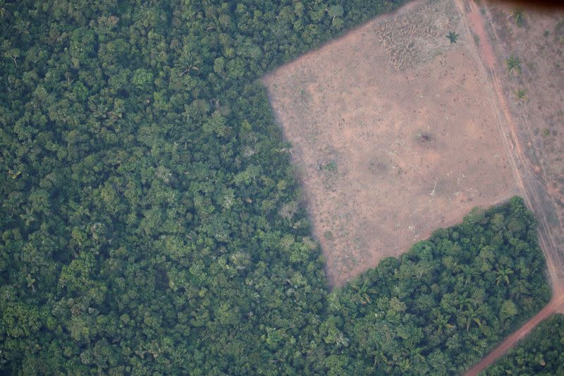 A fifth of EU soy imports from Brazil could be tainted by deforestation, study says
