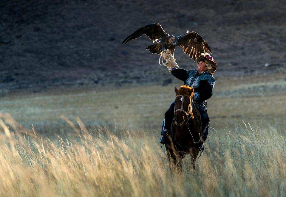 <p>The eagles are used to hunt foxes and small hares in order to get fur as well as food. (Photo: Daniel Kordan/Caters News) </p>