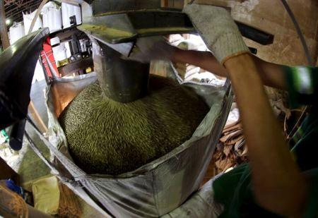 FILE PHOTO: A worker fills a 1-tonne super sack with coffee beans for export at a coffee warehouse in Santos, Brazil, on December 10, 2015.  REUTERS/Paulo Whitaker/File Photo