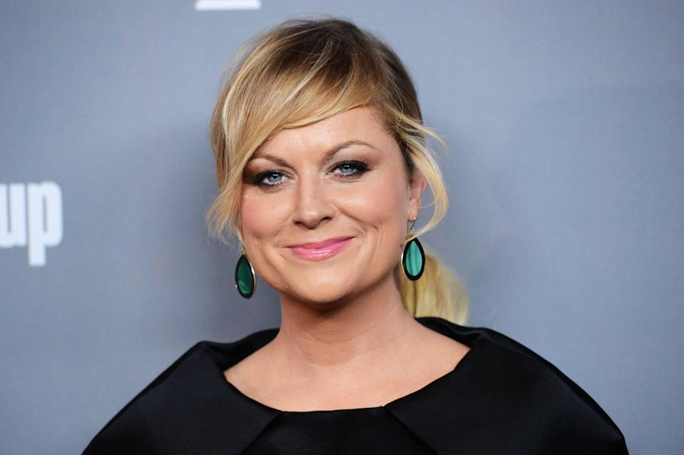 BEVERLY HILLS, CA - FEBRUARY 19:  Actress Amy Poehler attends the 15th Annual Costume Designers Guild Awards with presenting sponsor Lacoste at The Beverly Hilton Hotel on February 19, 2013 in Beverly Hills, California.  (Photo by Jason Merritt/Getty Images for CDG)