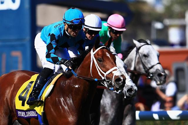 Stormy Liberal (#4), pictured November 2017, went off at odds of 7-1 and prevailed by a neck after dueling the 2-1 favorite World of Trouble down the strethch (AFP Photo/Sean M. Haffey)